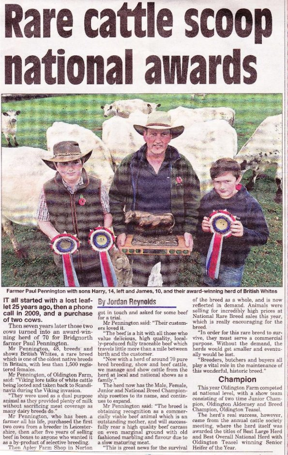 2016-11-03-pennington-article-british-white-cattle-bridgnorth-journal-page-5-jpeg