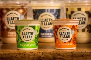 2017-01-30-village-dairy-yoghurt-llaeth-y-llan-2