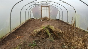2016-01-17-awg-clearing-polytunnel