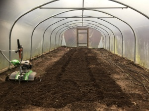 2017-02-15-awg-progress-phils-polytunnel