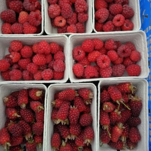 2017-06-23, AWG raspberries & tay berries, £1.99 per punnet